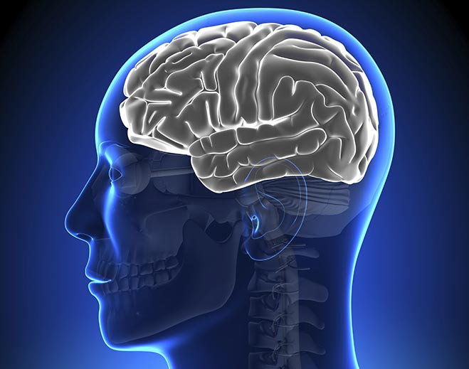 Neurology-Brain-Disorders