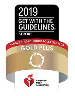 Stroke Gold Award